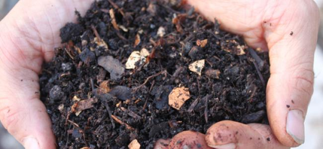 Compost contributions and fertilizer